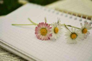 notebook-1405303_1920